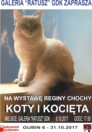 plakat wystawa Chocha-300